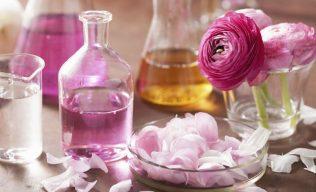 Harmonização Floral