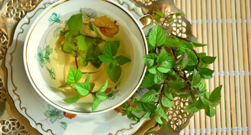 Chá ganha destaque como a melhor bebida para o verão